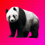 Rescue The Panda From Cage Games2Jolly