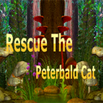 Rescue The Peterbald Cat GamesClicker