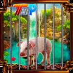 Rescue The Pig Top10NewGames