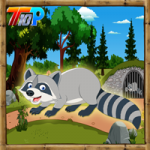 Rescue The Raccoon Top10NewGames