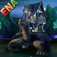 Rescuing Giant Turtle ENAGames