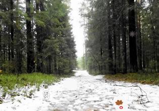 Return To Winter Forest EscapeFan
