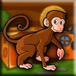 Rhesus Macaque Escape Games2Jolly