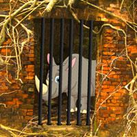 Rhino Escape Games2Rule