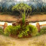 River Forest House Escape 8BGames