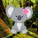 Save The Baby Koala WowEscape