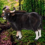 Save The Gaur WowEscape