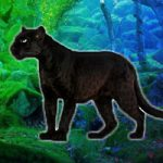 Save The Panther WowEscape