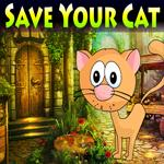 Save Your Cat Games4King