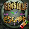 Sensible Escape ENAGames