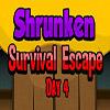 Shrunken Survival Escape Day 4