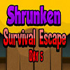 Shrunken Survival Escape Day 5