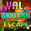 Skylark Bird Escape