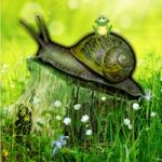 Snail Forest Escape Games2Rule