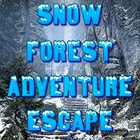 Snow Forest Adventure Escape Games2Rule