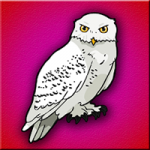 Snowy Owl Escape Games2Jolly