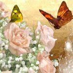 Spring Roses Amajeto