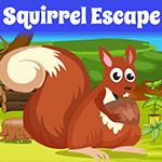 Squirrel Escape Games4King