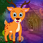 Stag Escape Games4King