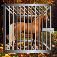 Starving Horse Rescue Games2Rule