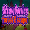 Strawberries Forest Escape