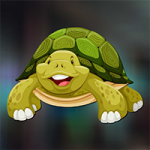 Sulcata Tortoise Escape AvmGames
