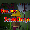 Summer Forest Escape