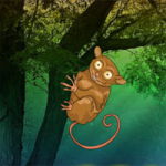 Tarsier Fantasy Forest Escape WowEscape