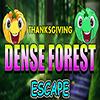Thanksgiving Dense Forest Escape