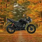 Thanksgiving Forest Fun Escape FunEscapeGames
