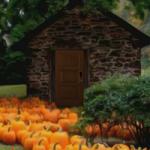 Thanksgiving Pumpkin FunEscapeGames