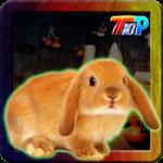 Thanksgiving Rescue The Bunny Top10NewGames