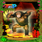 Thanksgiving Rescue The Chimpanzee Top10NewGames