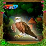 Thanksgiving Rescue The Eagle Top10NewGames