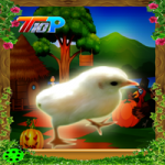 Thanksgiving Rescue The Little Chicken Top10NewGames