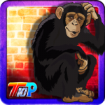Thanksgiving Rescue The Monkey Top10NewGames