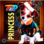 Thanksgiving Rescue The Princess Pet Top10NewGames