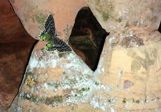 The Forgotten Cave 3 LolEscape