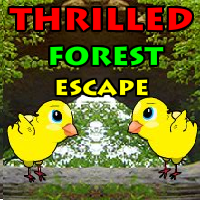 Thrilled Forest Escape YalGames