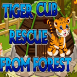 Tiger Cub Rescue From Forest Games2Jolly