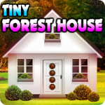Tiny Forest House Escape AvmGames