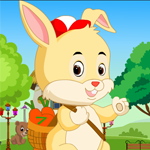 Tiny Lovely Rabbit Rescue Games4King