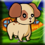 Tiny Puppy Escape Games2Jolly