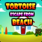 Tortoise Escape From Beach AvmGames