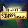 Trapped Squirrel Escape