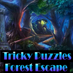 Tricky Puzzles Forest Escape Games4King