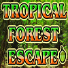 Tropical Forest Escape WowEscape
