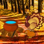 Turkey Forest Return Escape Games2Rule
