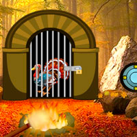 Turkey Waterfall Forest Escape Games2Rule