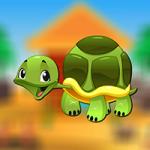 Turtle Escape AvmGames